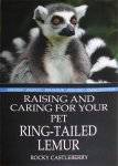 Raising and Caring For Your Pet Ring-tailed Lemur