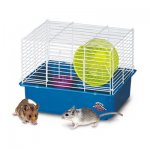 MY FIRST HAMSTER HOME/1 STORY